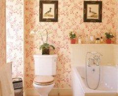 Варіанти Облицювання ванній керамікою